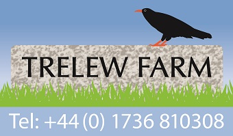 Trelew Farm Bed and Breakfast with Caravan Club Site